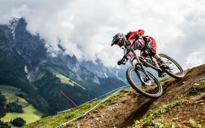 Trekking  and Mountain bike